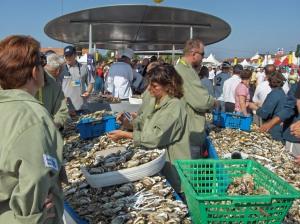 In 2005 pakten de vissers van de Vendée goed uit met oesters. foto René Schrier